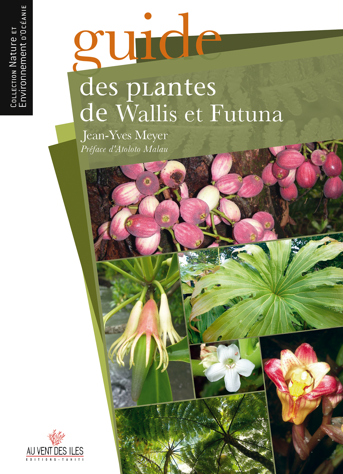 Guide des plantes de wallis et futuna editions au vent for Catalogue fleurs et plantes